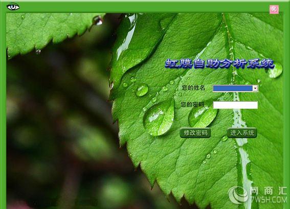 树叶图标的加速器