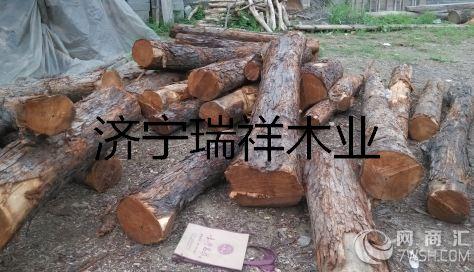 建材网 木材 原木  价格面议 品牌香椿木 产品/服务山东香椿木 主营